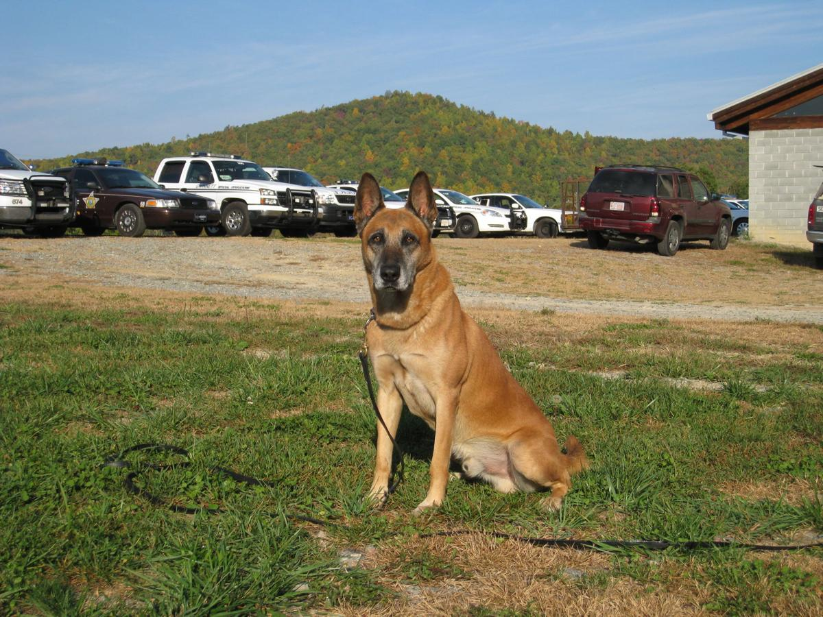 Retired Gwinnett police K9 passes away at age 16 after serving for 7 years