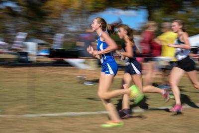 Gwinnett runners earn all-area, all-region honors