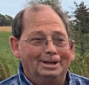 David M Vining