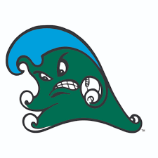 Carroll, Tulane run for 7 TDs, beat Southern Miss 66-24