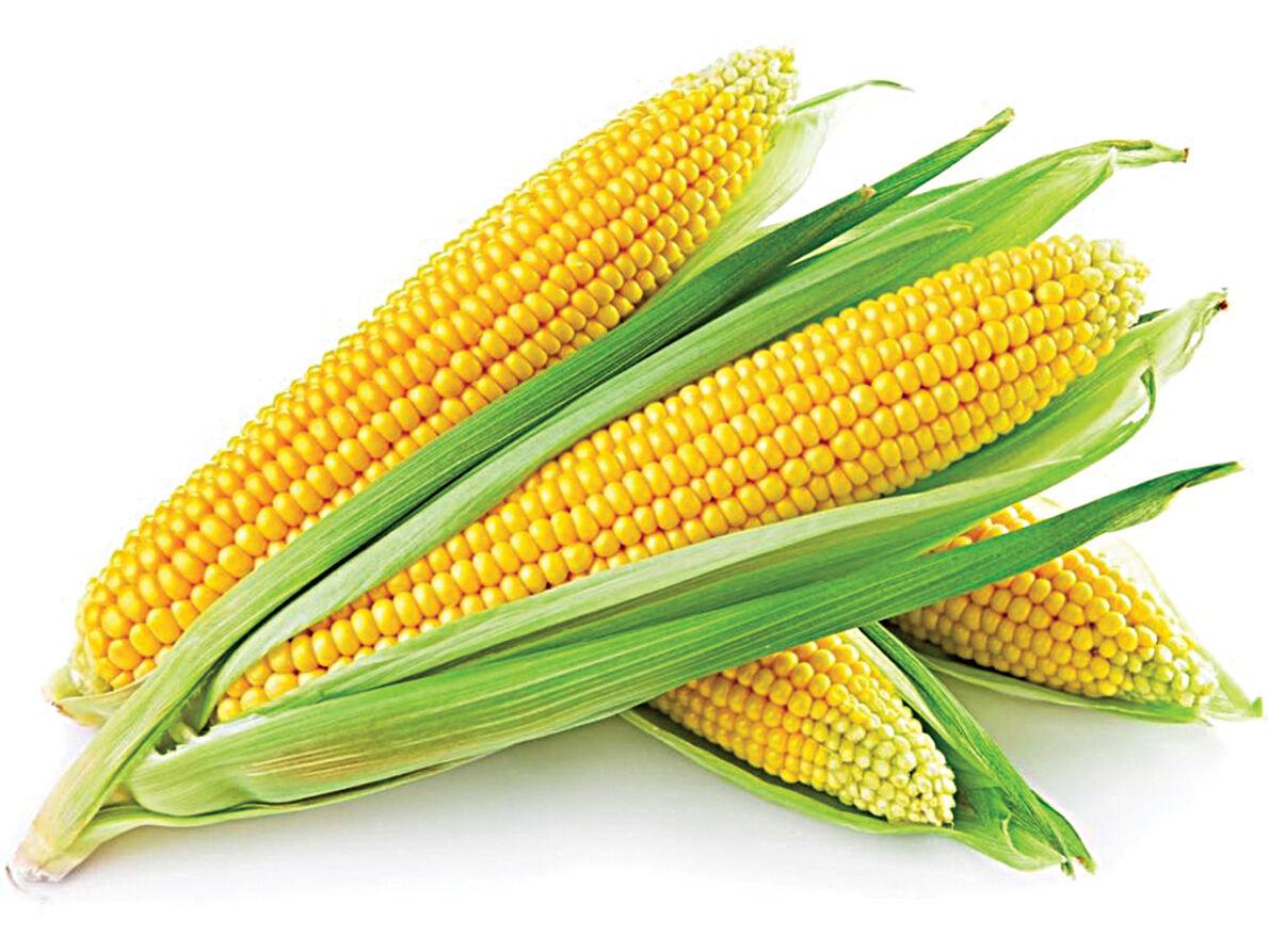 0721 recipes corn.jpg
