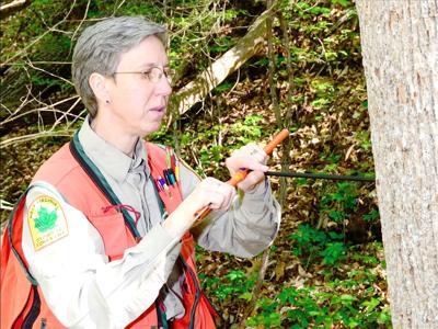 0901 women forestry.jpg