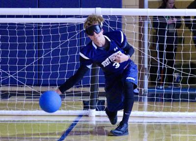 WVSDB Goalball