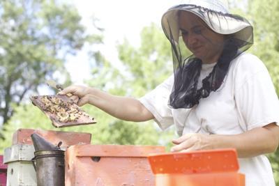 West Monroe beekeeper Amy Weeks.jpg