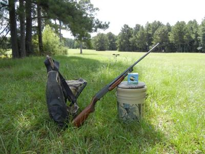Dove hunting citations
