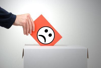 Wahlschein - Kritik