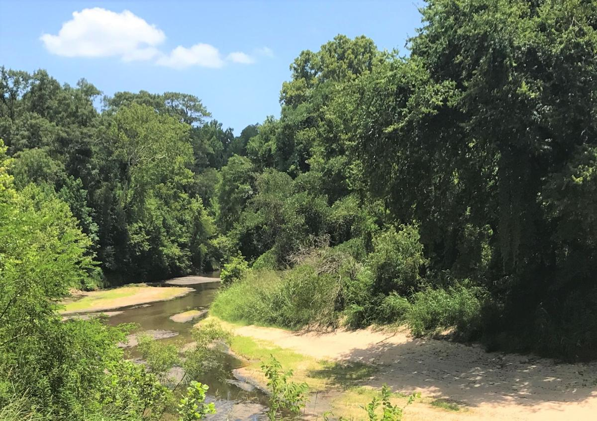 Cole's Creek