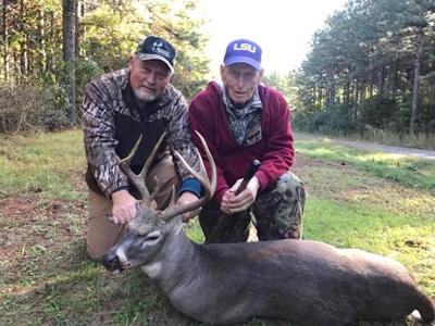 Deer pic Williams