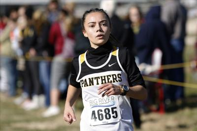 Local runners look to excel at state meet
