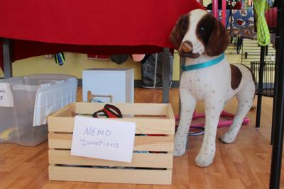 Pet clothing drive to benefit NEMO Humane Society