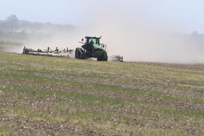Pleasant weather strengthens planting season