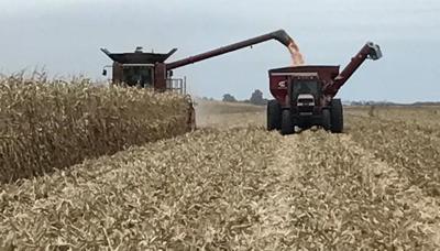 Farmers find fair weather, good yields