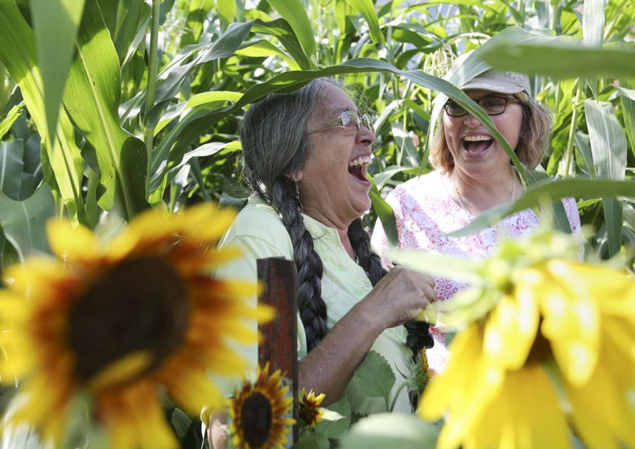 Trust, friendship lead to regrowth of sacred corn