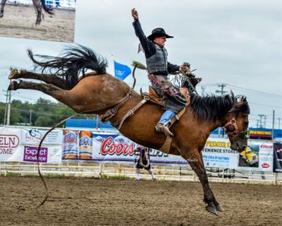 Bucking horse courtesy photo