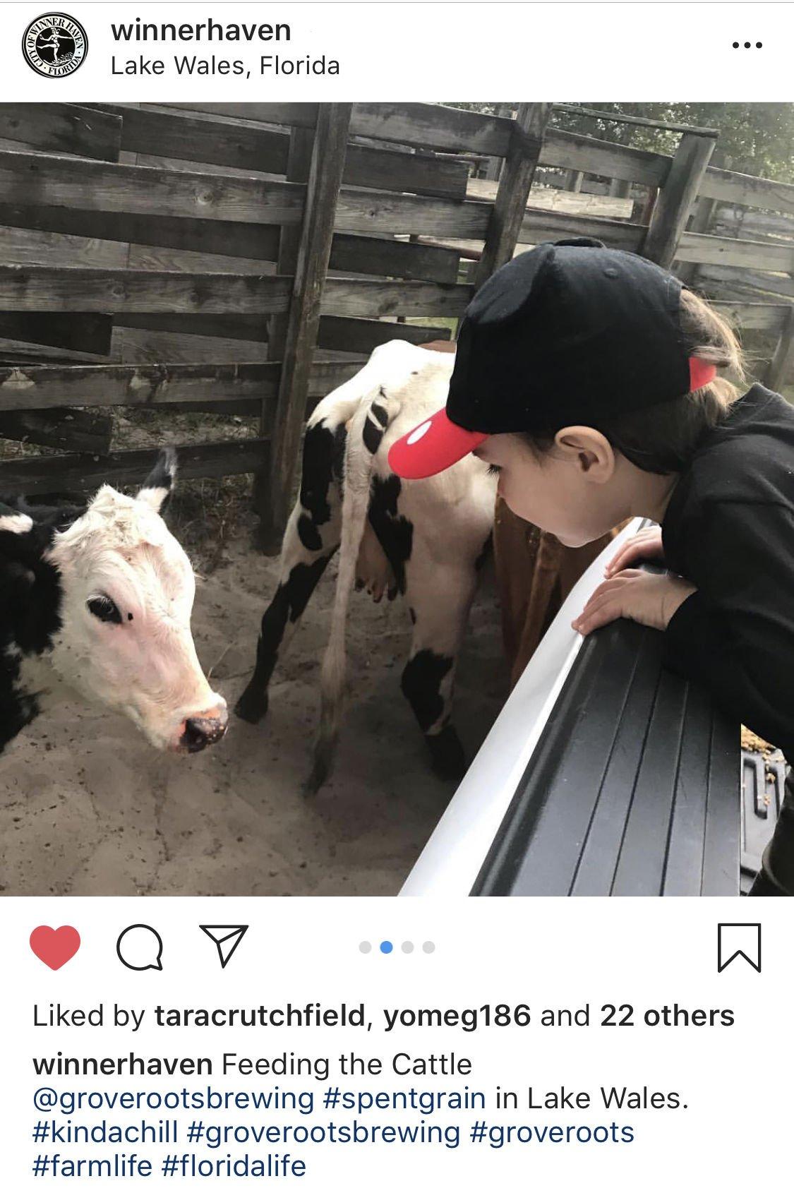 boy with cow.jpg
