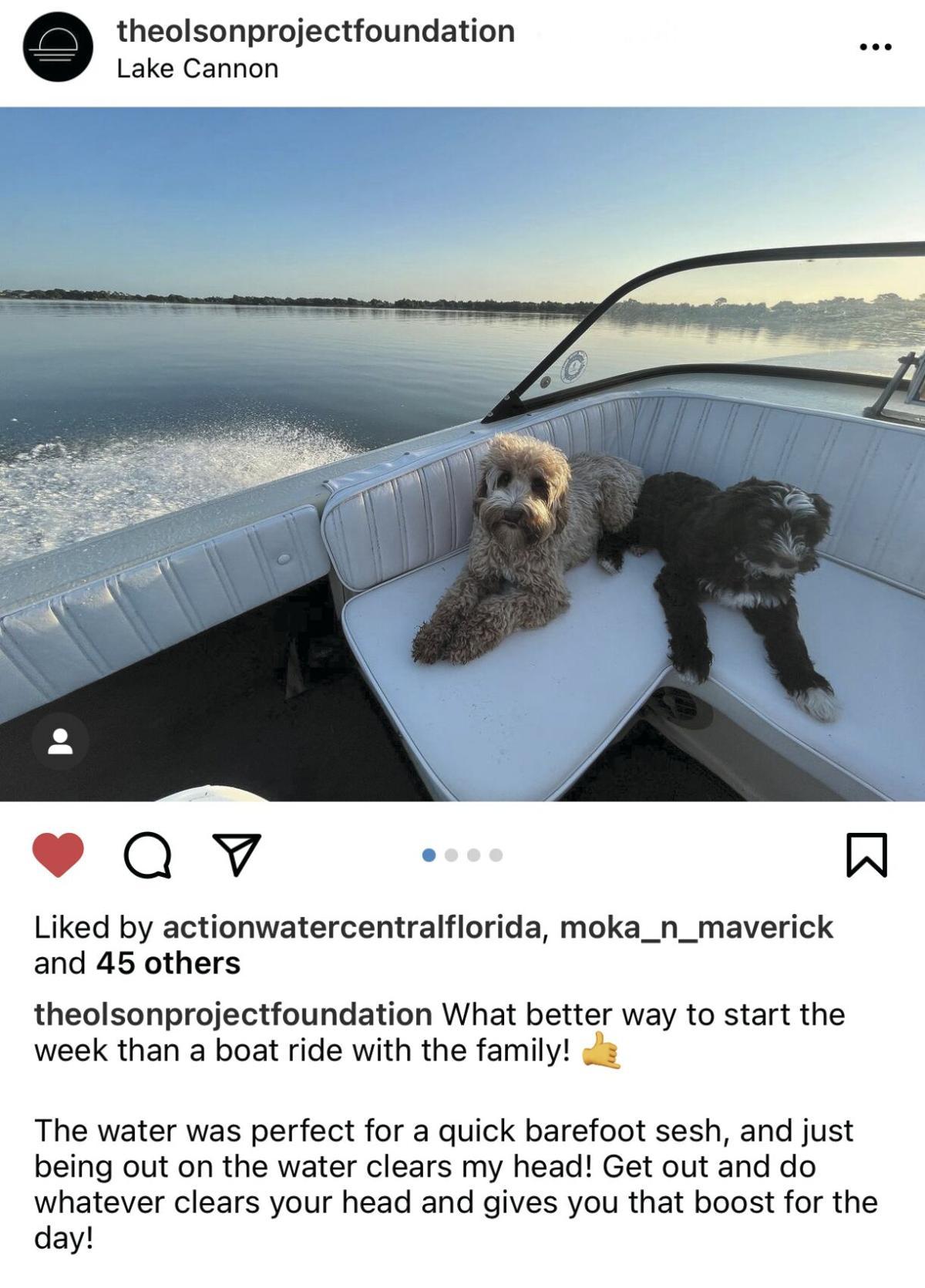 boat dog.jpeg