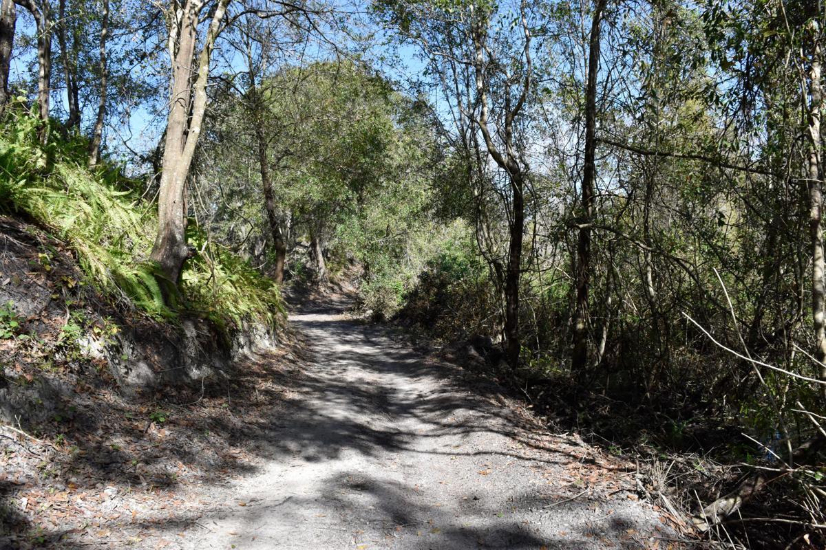 Bone Valley Trail