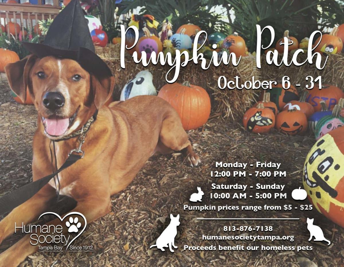 pumpkin-patch-flyer.jpg