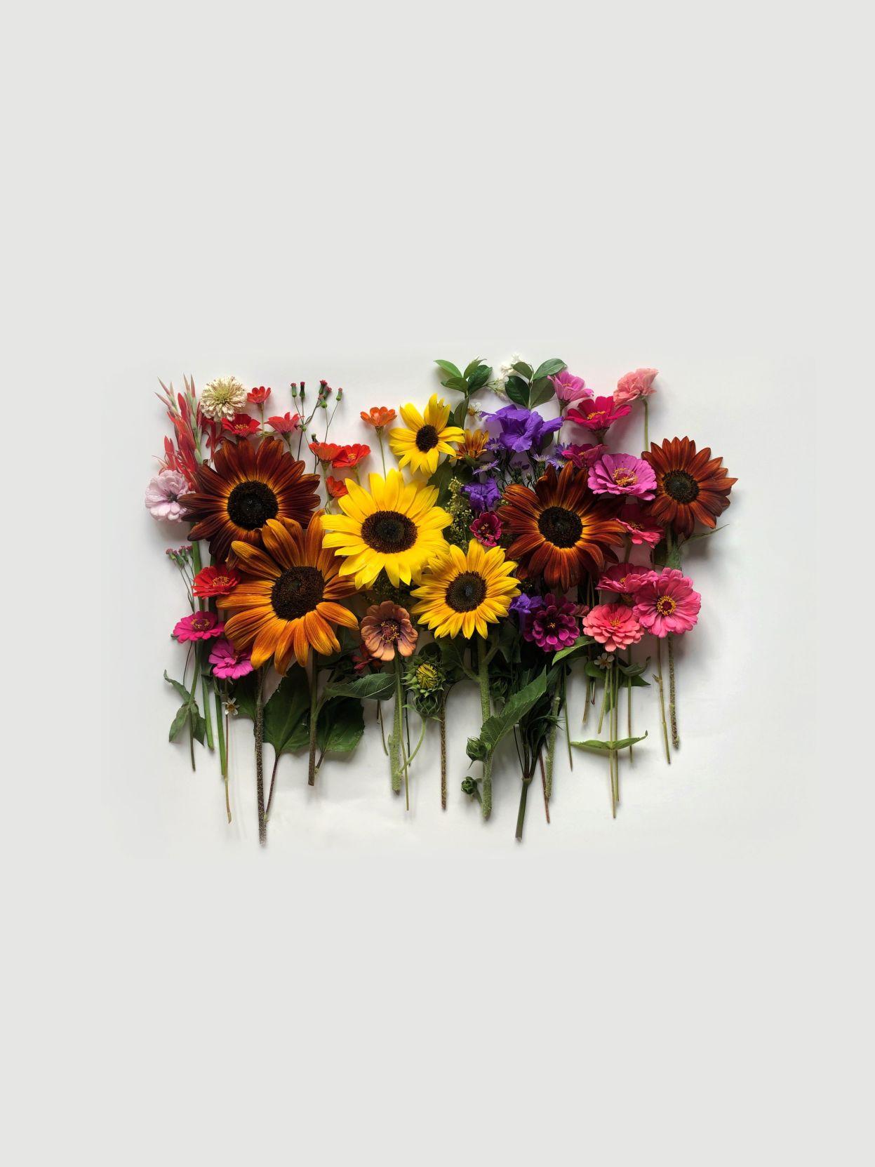 lkld_cover_flowers.psd