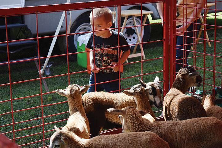 Perry County Fair 2