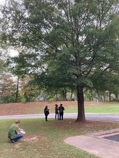 10-14 Tree Week.jpg