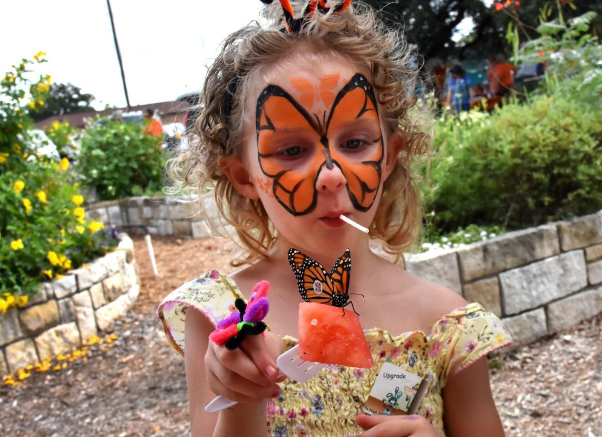 Monarchs (2).jpg