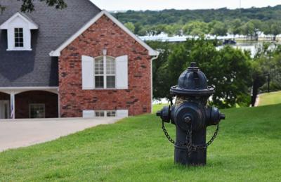 Black fire hydrants