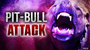 Violent Pit Bull attack in Hesperia; owner airlifted