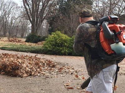 Blowing leaves, grass into the street could soon become illegal