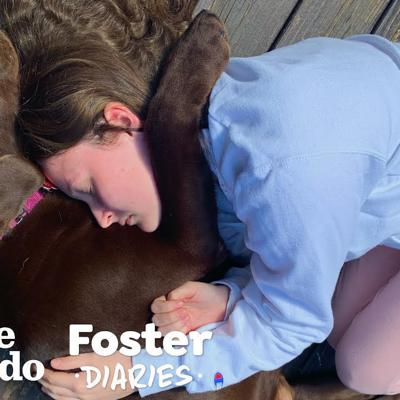 Dog Rescued From Puppy Mill Learns What It Is To Be Loved | The Dodo Foster Diaries