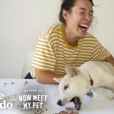How To Be a Crazy Dog Mom With Kristen McAtee | The Dodo You Know Me Now Meet My Pet