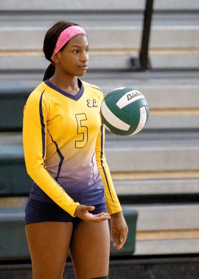 Eagle's Landing High volleyball aiming for more in 2017