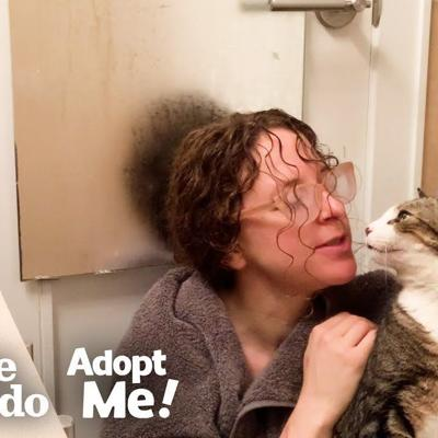 Sick Cat Makes His Foster Mom Go To Extremes! | The Dodo Adopt Me!