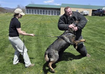 Elite Service Dogs Trained In West Virginia News Herald