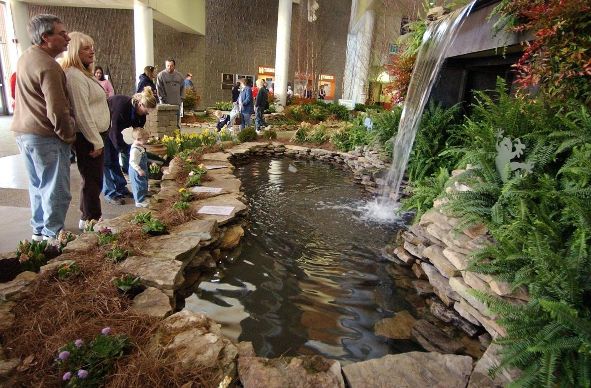 Get down and dirty at the annual WSAZ Home and Garden Show ...