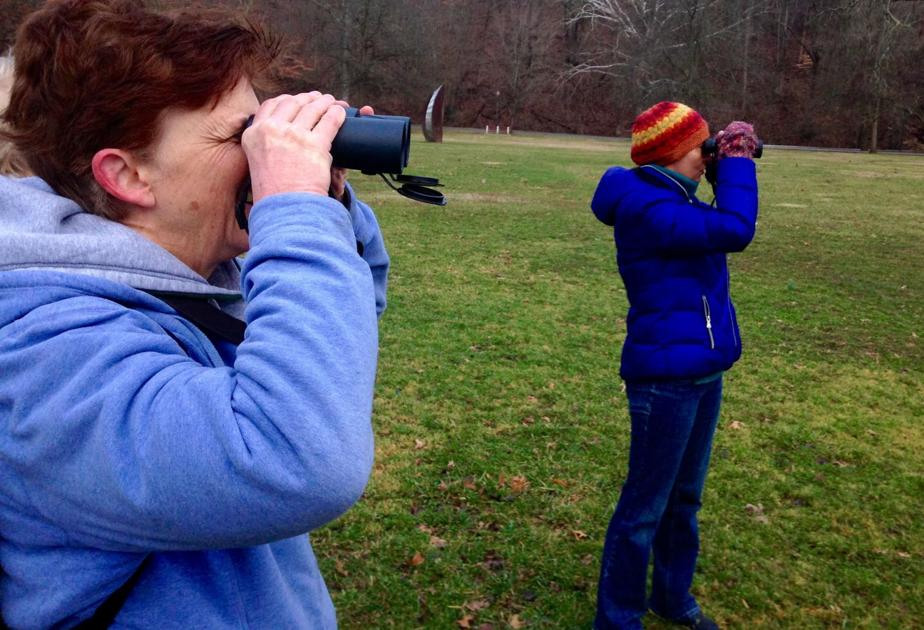 Locals log data for global bird tracking project