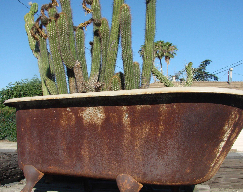 jean mcclelland original feet key when buying antique clawfoot tub