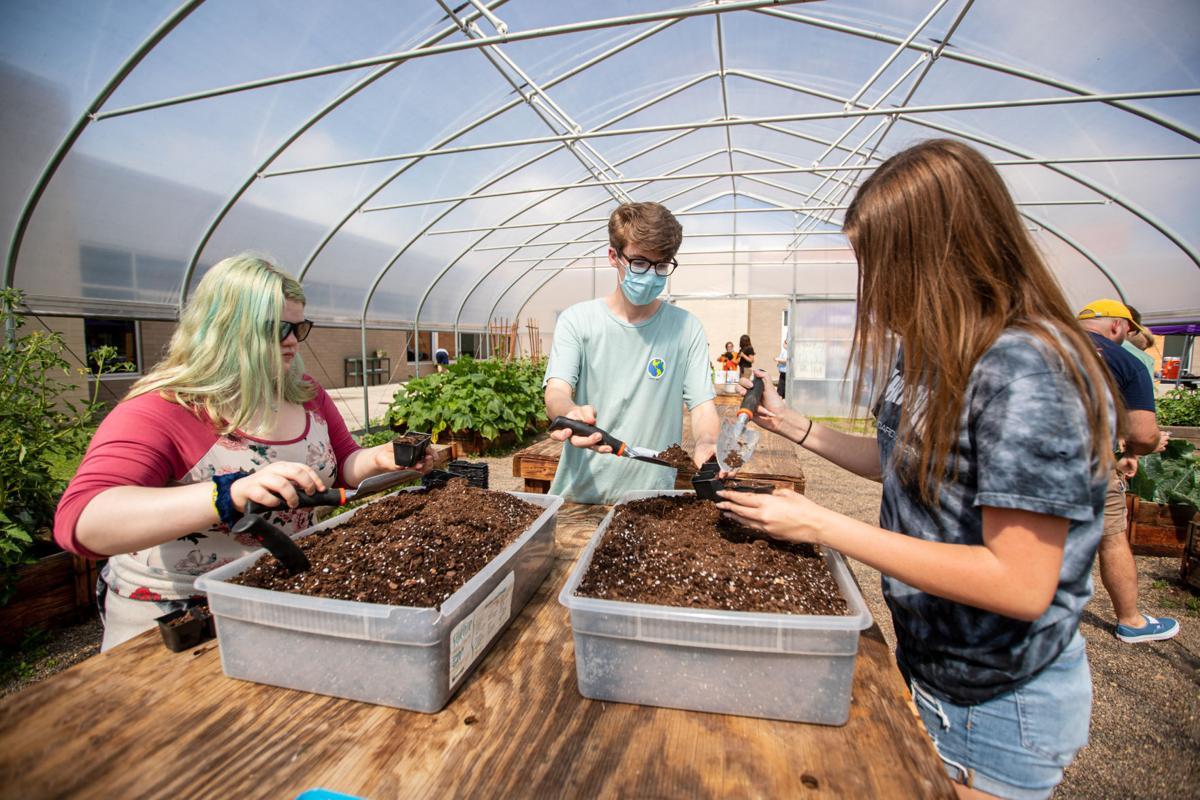 20210608 greenhouse 01.jpg