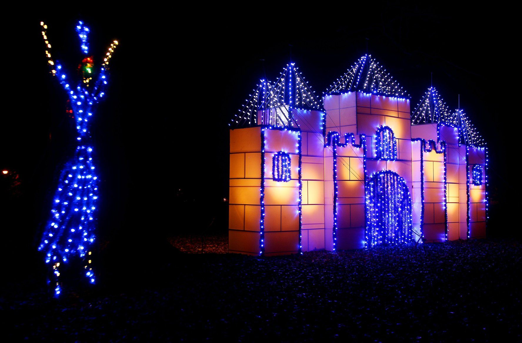 Lights and sights of the season | Features/Entertainment | herald ...