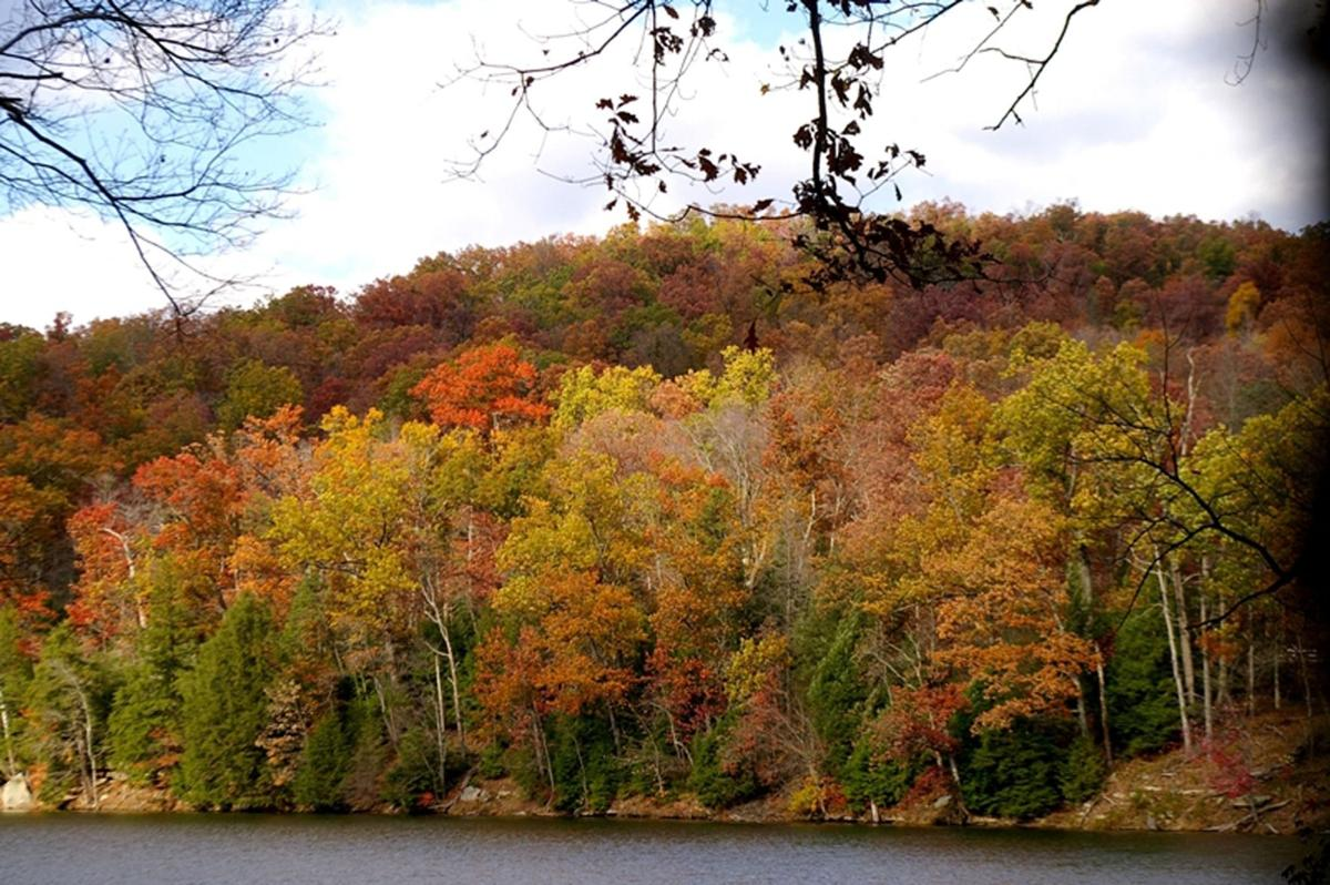The time for viewing area fall foliage has arrived | Features ...