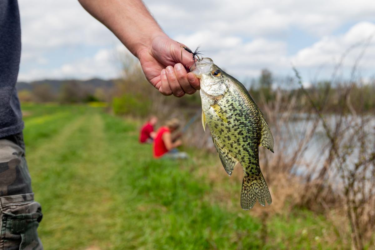 20200407_hd_fishing