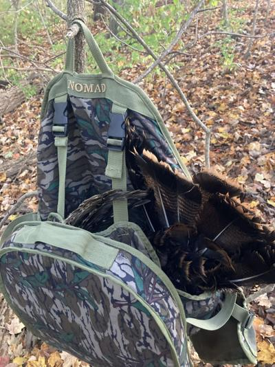 Photo: Fall Turkey Hunting Time
