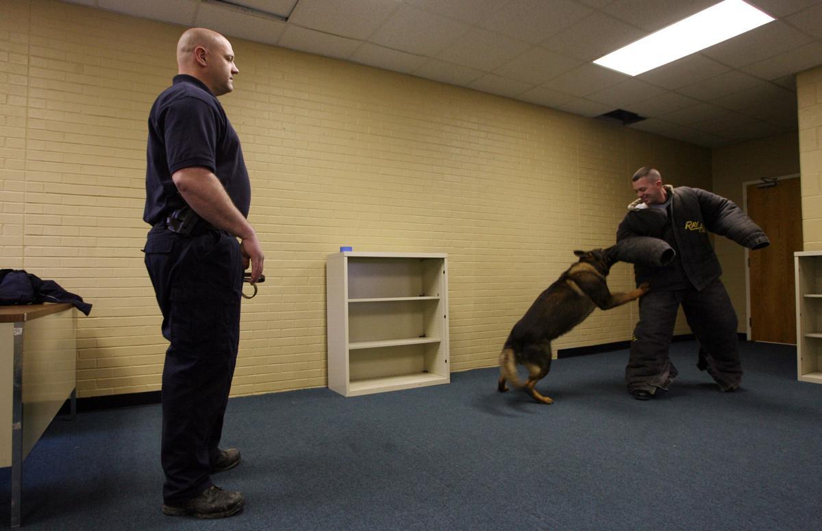 56a44dbbeba5 Officer is veteran on Huntington Police Department's K-9 Unit ...