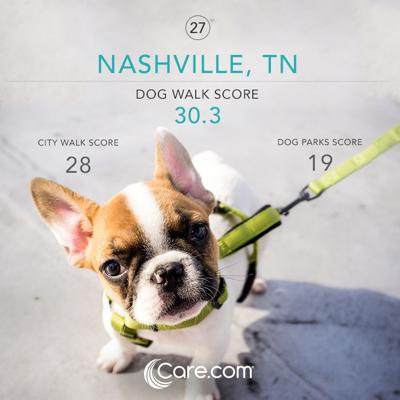 🐶 Dogs In Nashville Get The Least Exercise 🐶 Care com Think Tank