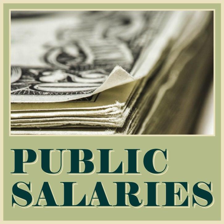 Public Salaries