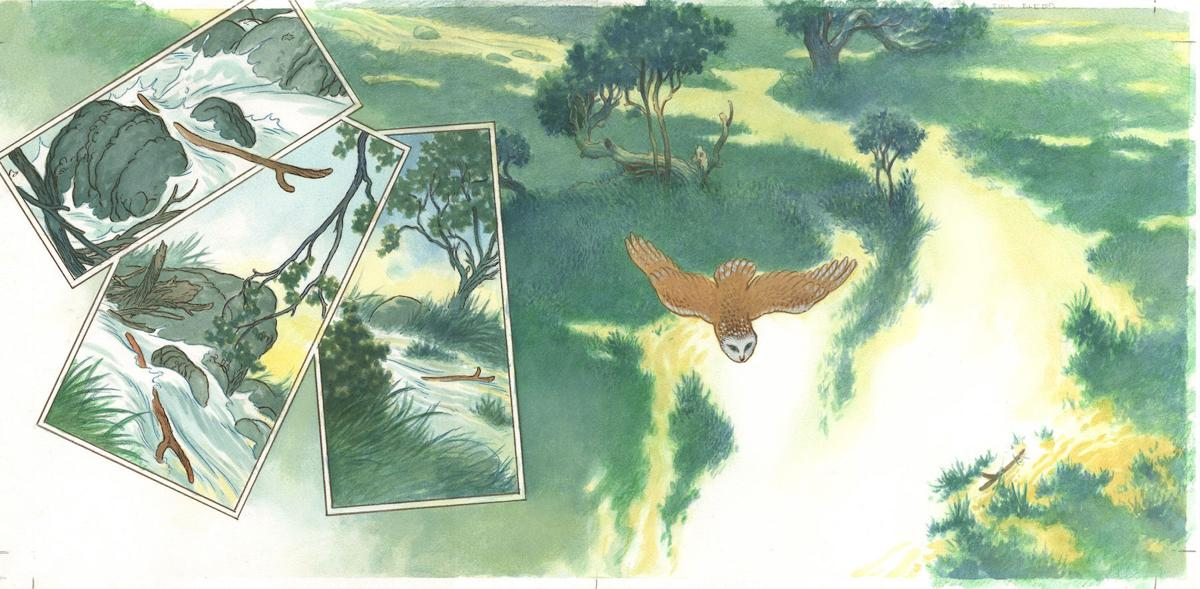 Driftwood pg 20 & 21