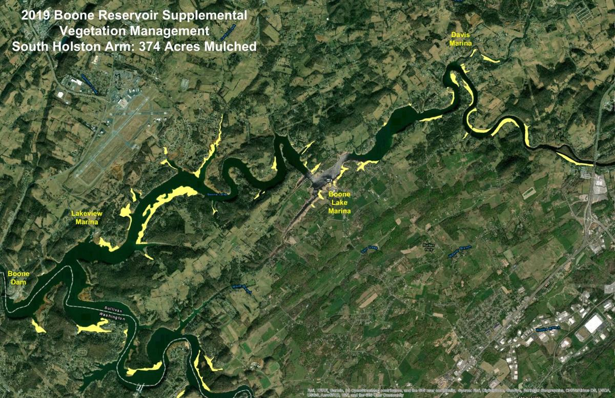 South Holston arm of Boone Lake vegetation clearing map