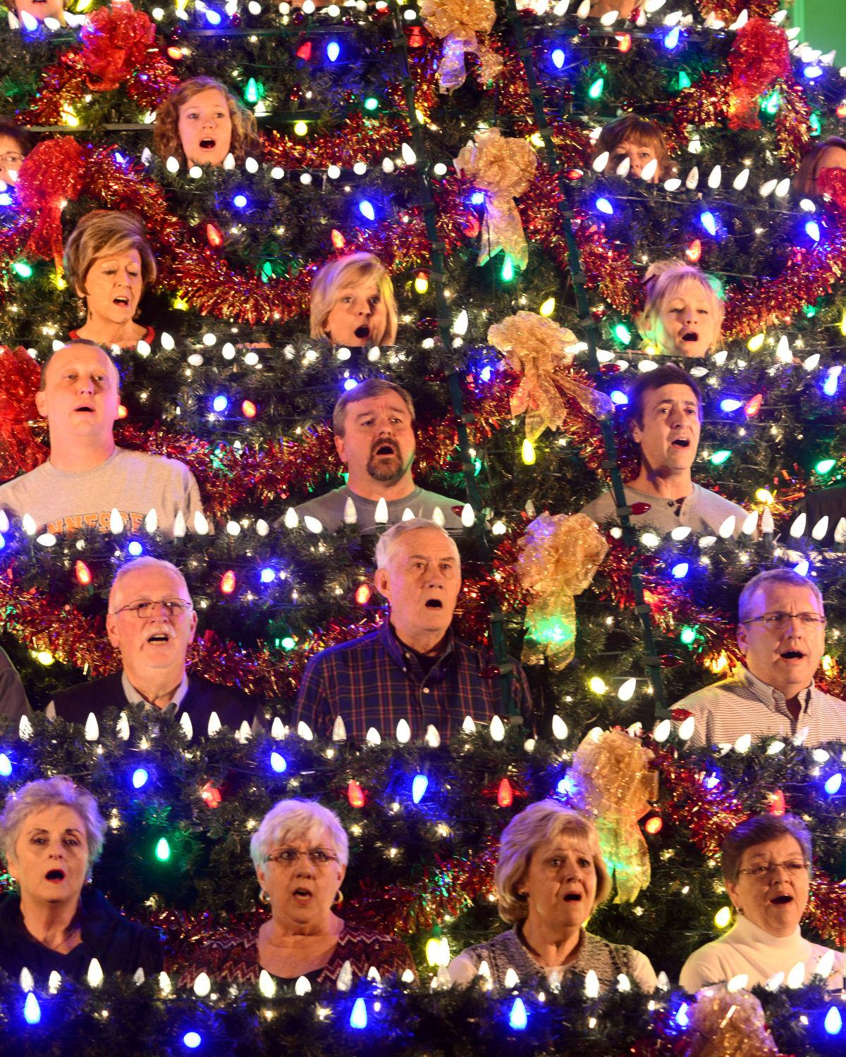Christmas Trees Bristol: Church Members Use Time, Talents To Give Community A