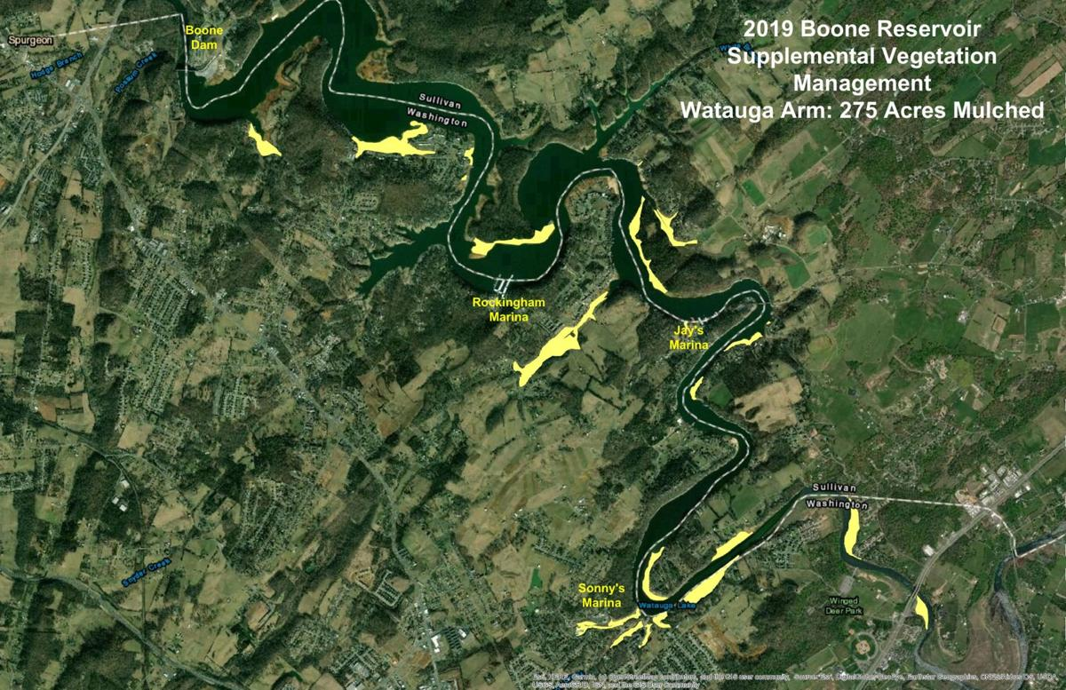 Watauga arm of Boone Lane vegetation clearing map