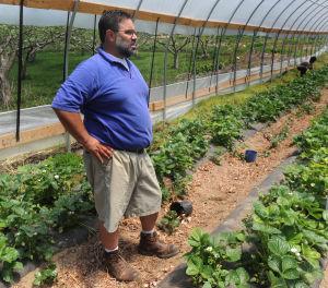 glenmary gardens gets 213 000 federal grant bristol local news rh heraldcourier com
